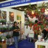 20th World Orchid Conference 2011 in Singapore