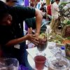 Making Terrarium 2
